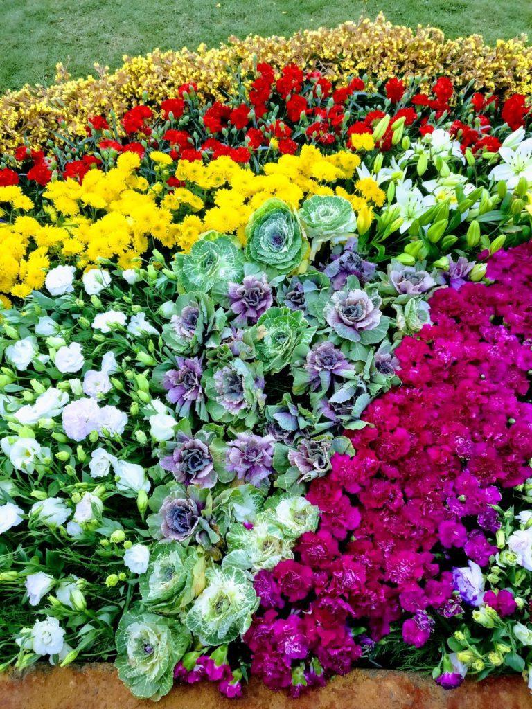 Array of beautiful flower arrangements